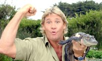 Animal Rights Group Slammed for Accusing Steve Irwin of 'Harassing' Stingray That Killed Him