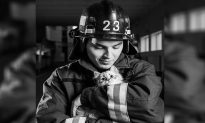 Burnt Cat Gives Fireman the Cuddliest Thanks for Rescuing Him from Devastating Wildfire