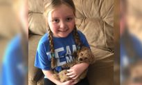 Terminally Ill Wisconsin Girl Receives Over 100,000 Letters From Dogs From Across the World