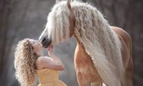 Mare Nicknamed 'Rapunzel' Has Won Netizens' Hearts with Her Long and Wavy Mane