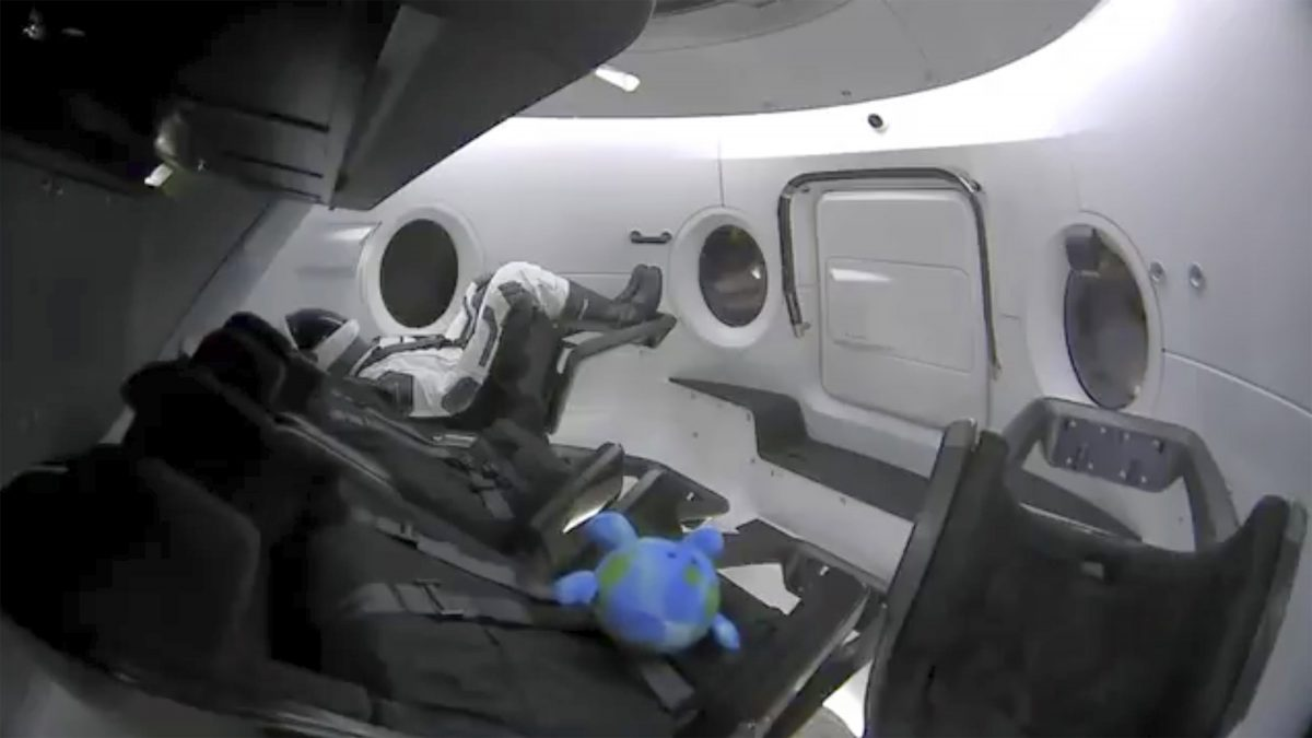 test dummy along with a toy that is floating in the Dragon capsule