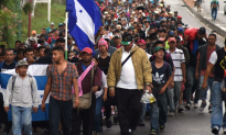 DHS: Illegal Arrivals Set To Hit One Million By End Of Year