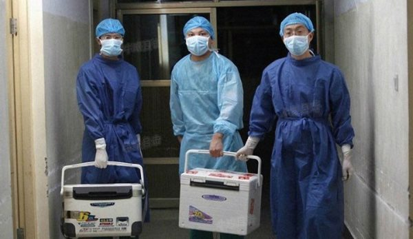 Chinese doctors carry fresh organs