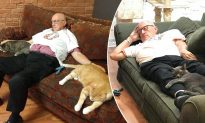 'Cat Nap' Grandpa Raises $40,000 for Shelter, Saving Special-Needs Cats from Euthanasia