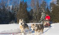 5 Ways to Play in the Snow in Quebec