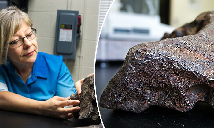 Farmer Discovers He's Using a Meteorite As a Doorstop for Years, Worth $100,000