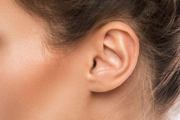 Small ear