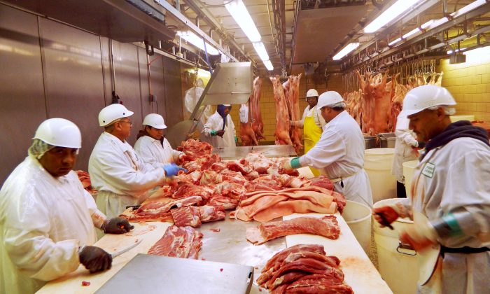 Workers cut pork at Park Packing—one of the Chicago's few remaining slaughterhouses—in Chicago, Illinois on July 18, 2015. (Karl Plume/Reuters)