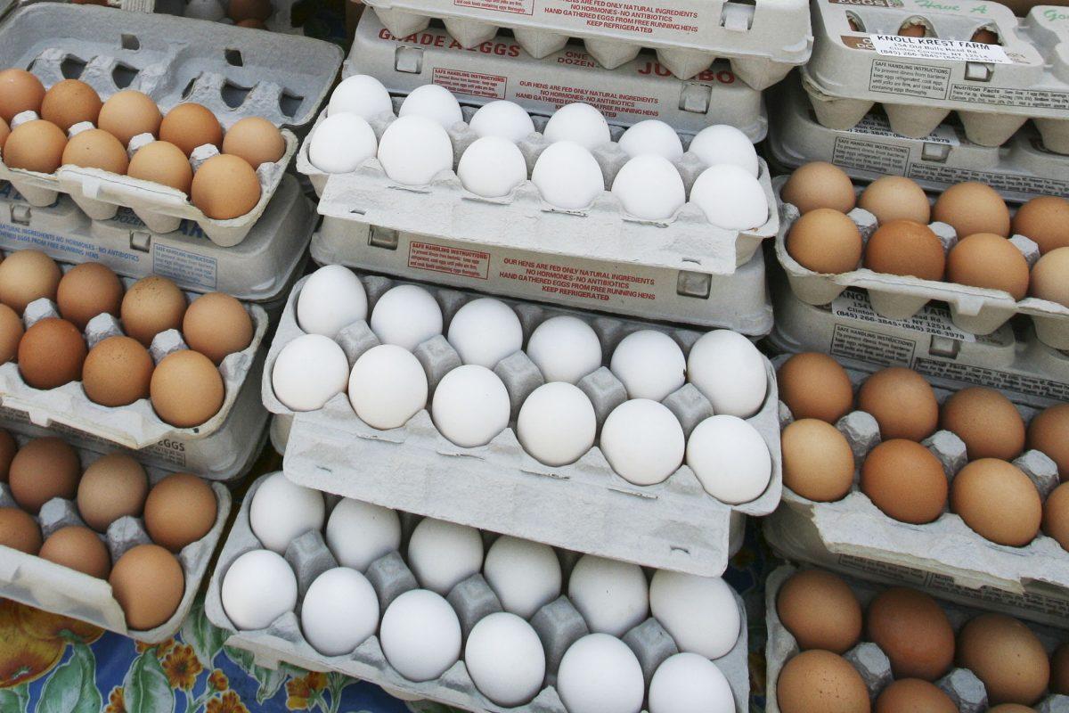 Cartons of eggs