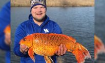 Man Reels in Giant 20-pound 'Goldfish' with a Piece of Leftover Biscuit: 'It Was Crazy'