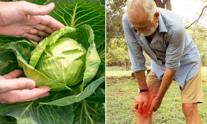 Say Goodbye to Your Joint Pain in 1 Hour with This 'Cabbage Bandage' Hack