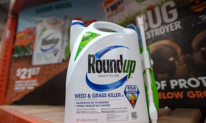 Roundup products are seen for sale at a hardware store in San Rafael, California, on July, 9, 2018. (JOSH EDELSON/AFP/Getty Images)