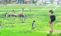 Film Review: 'Penguin Highway'