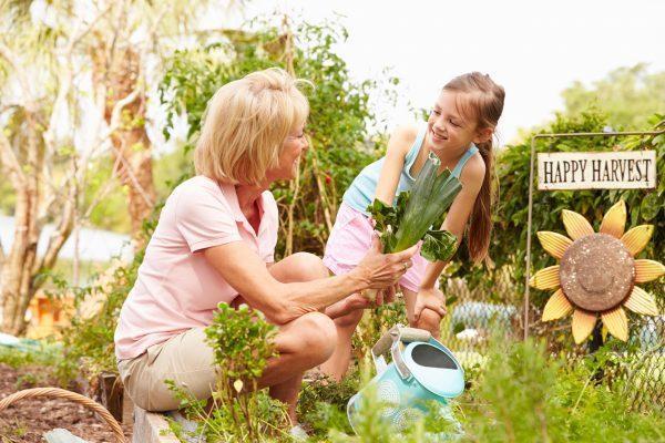 plant own garden
