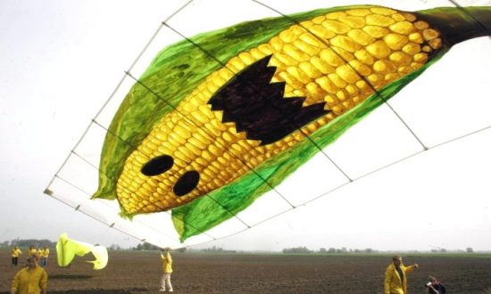 15 Things You Should Know About Monsanto