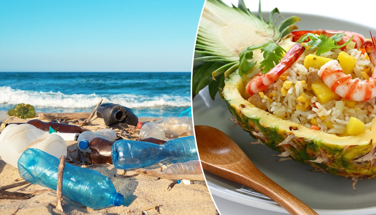 Eco-Conscious Hawaii Could Become First US State To Ban Plastics At Restaurants