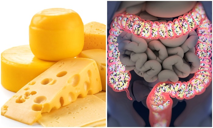 8 Foods That Can Feed Your Gut with the Power of Probiotics–Incredible for Weight Loss & Other Intestinal Benefits