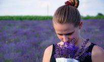 Healing Through Your Sense of Smell
