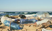 12-Year-Old's Solution to Our Oceans' Plastic Waste Crisis Is Beginning to Turn Heads