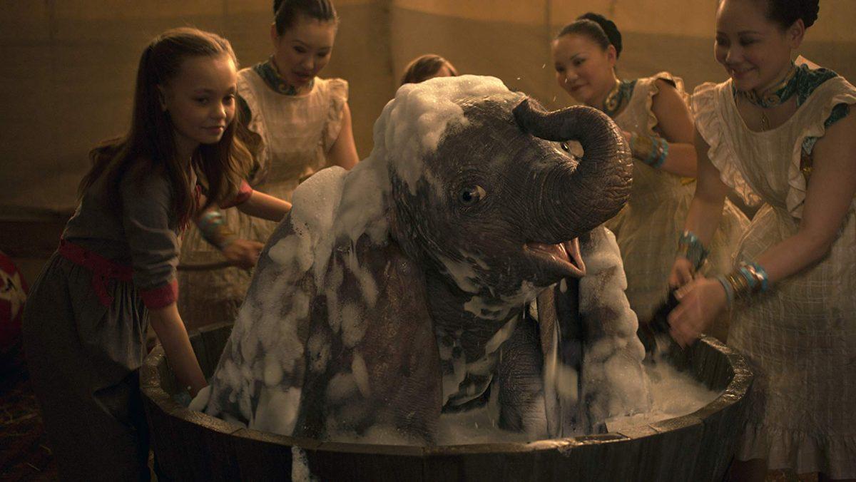 elephant in a tub