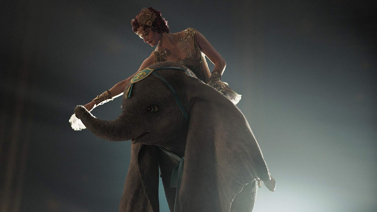 woman on small elephant
