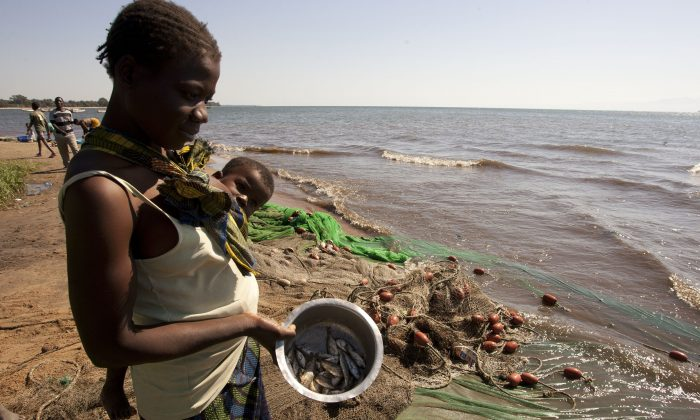A Malawian woman carrying her child shows the few fish she bought from local fishermen on the shores of Lake Malawi near the Makawa Fishing Village in eastern Malawi in this file photo. (Amos Gumulira/AFP/Getty Images)