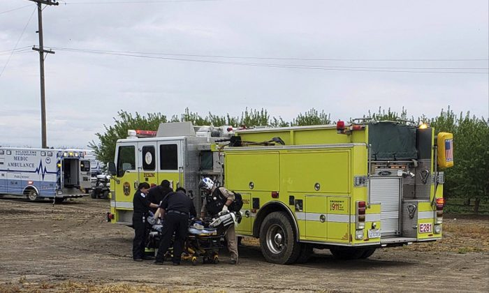 Fire and medical officials attend to one of two teenage boys who were electrocuted while trying to rescue a dog from an irrigation canal at an orchard in Dixon, California, on April 1, 2019. (California Highway Patrol/Via AP)