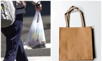 NYC May Start Charging 5 Cents for Paper Bags After State Bans Plastic Ones