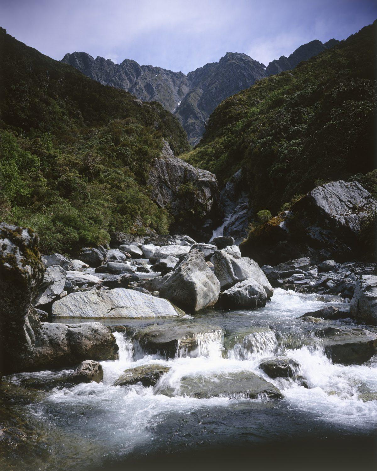 Greenstone water new zealand