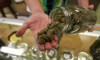 Heavy Marijuana Use by Pregnant Women Can Affect Baby's Brain Development, Study Says