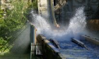 Student, 19 Whose Legs Were Crushed on Log Flume Ride Receives $26,000 Compensation