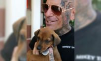 Tattooed Bikers Confront Abusive Pet Owners to Rescue Desperate Animals