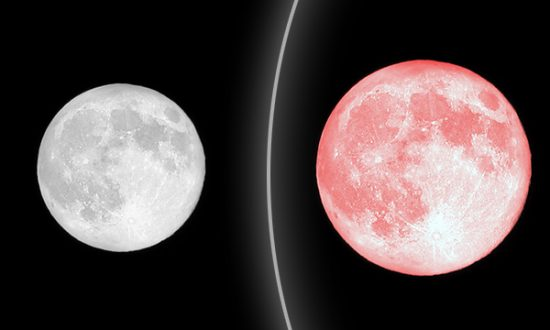 April's 'Full Pink Moon' to Appear Early on Good Friday Morning–Don't Miss It!