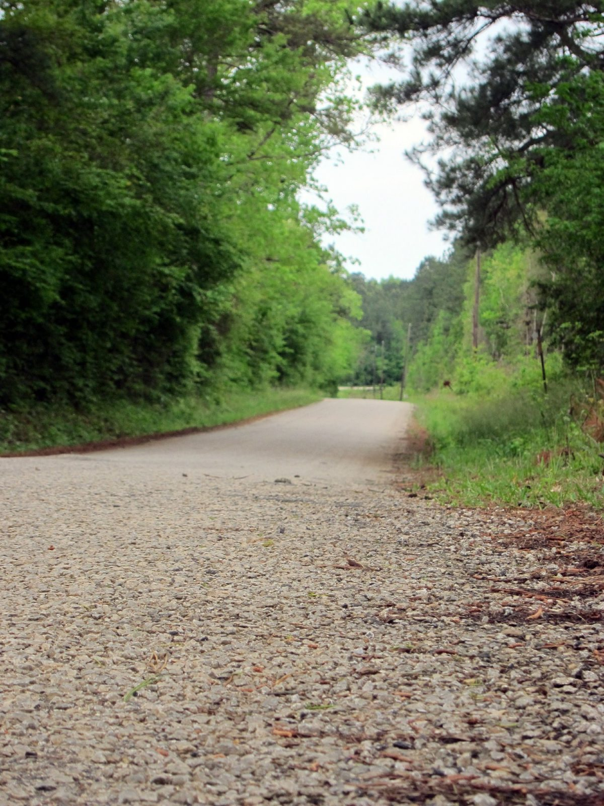 A section of Huff Creek Road, where James Byrd Jr. was dragged to death