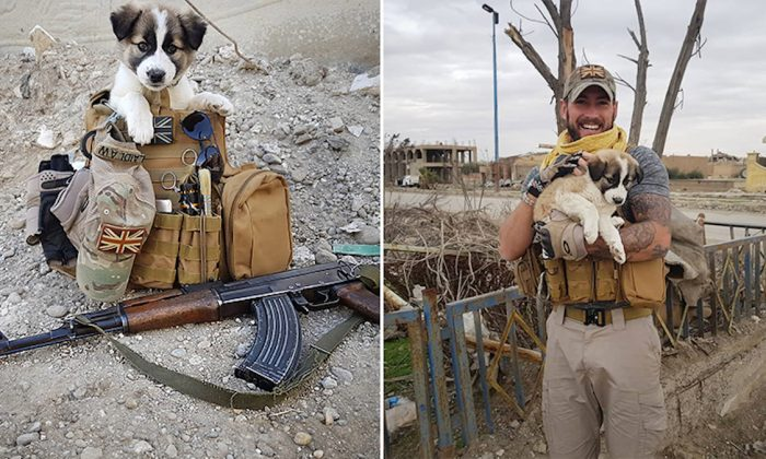 Ex-soldier Reunites With Puppy That He Saved From Rubble Pile in Syria