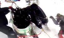 Stranded Horse Airlifted After Being Rescued by Snowmobilers
