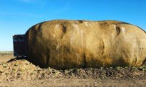 Giant Idaho Potato Turned Into an Airbnb for $200 per Night