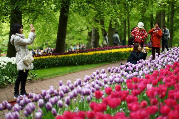 Netherlands tourists