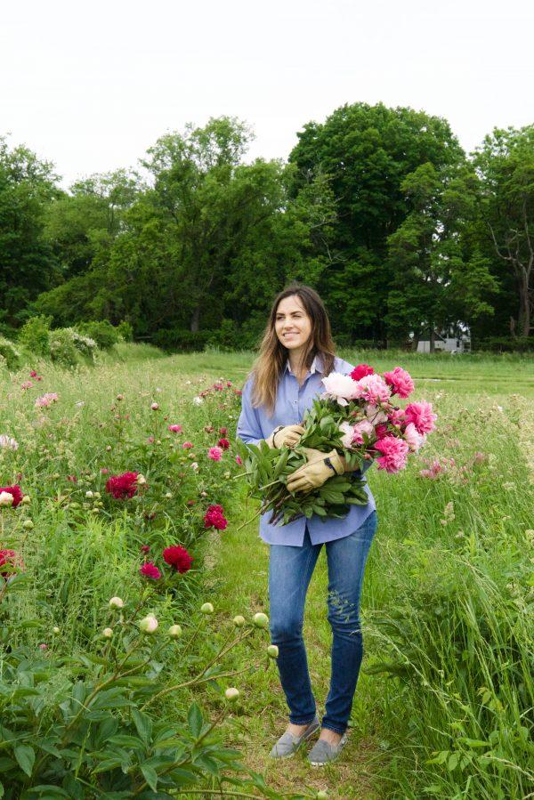 flower picker peonies at Peony's Envy