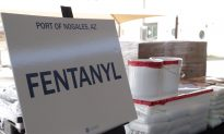 Chinese National Charged With Importing Fentanyl Analogues to US