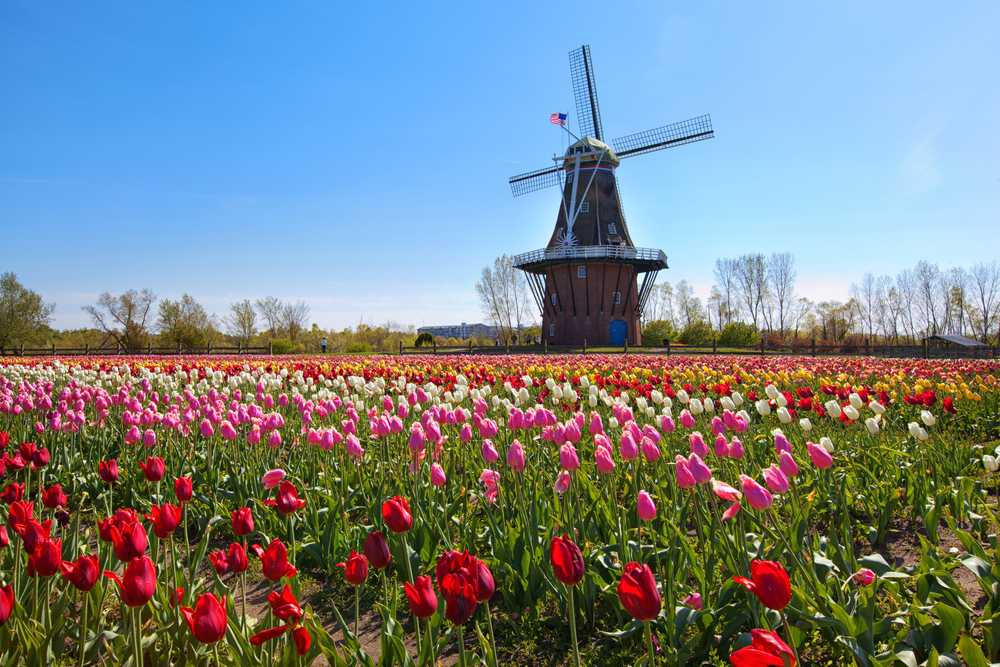 windmill holland michigan