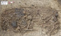 5000-Year-Old Grave Reveals Family of 15 Killed by Blows to Head