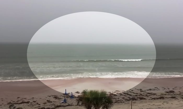Beachgoer Starts Filming Just Before Storm. Moments Later, Something Takes His Breath Away