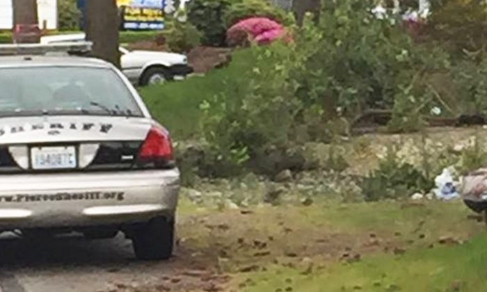 Candid Photo Goes Viral When People See Who Is Sitting on Roadside With Sheriff's Deputy