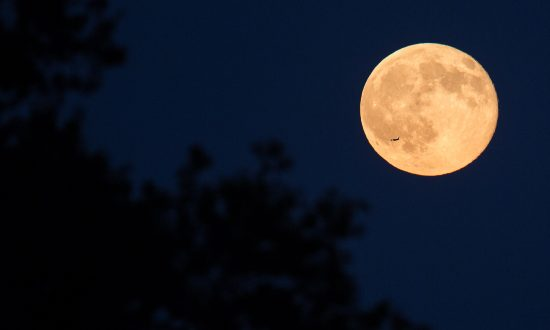 Rare Blue Moon Inspires Beauty and Enlightenment