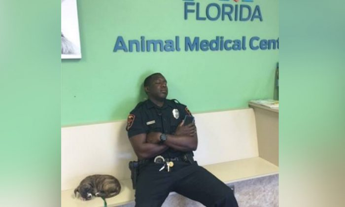 Florida Police Officer Rescues Puppy While on Duty, Photo Goes Viral