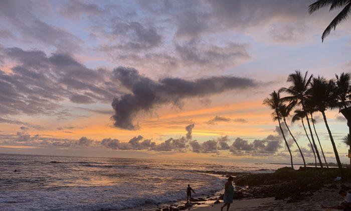 Exploring the Island of Hawaii