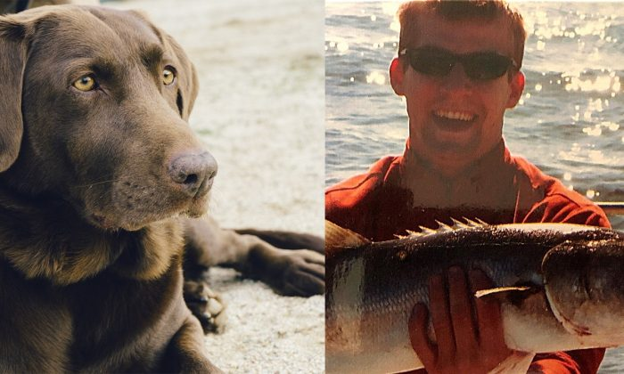 A dog similar to Java, a lab killed by a gator in Florida. (Jay Mantri/Pixabay);  A picture of the owner, Andrew Gabriel Epp. (Emily Rhoads/GoFundMe)