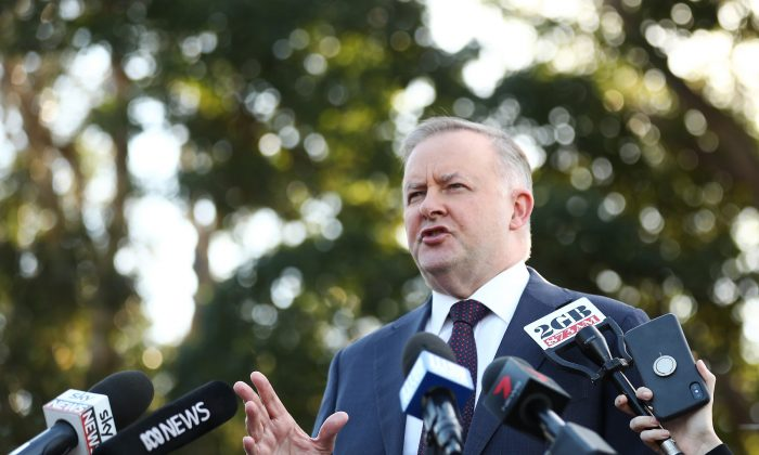 Anthony Albanese speaks to media at Henson Park Oval in Sydney, Australia, on May 21, 2019. (Mark Metcalfe/Getty Images)
