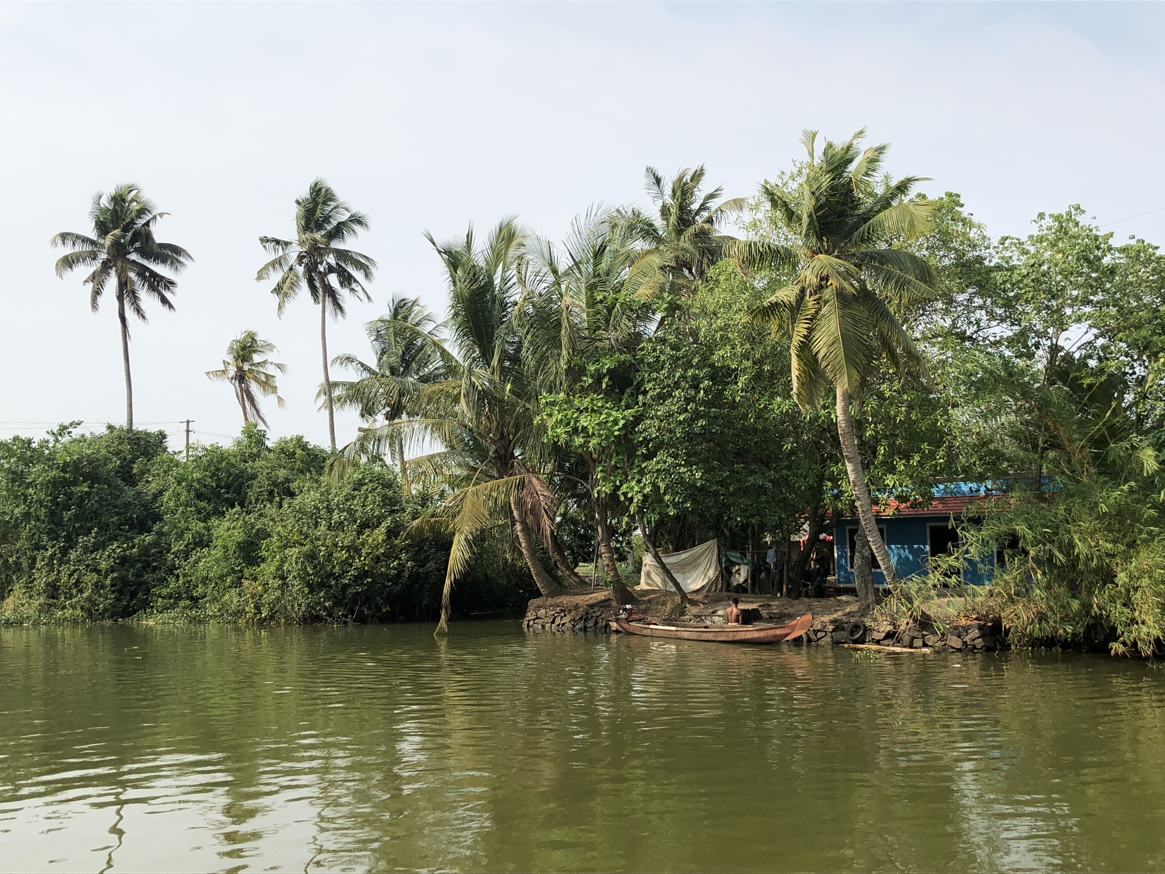 view from boat kerala